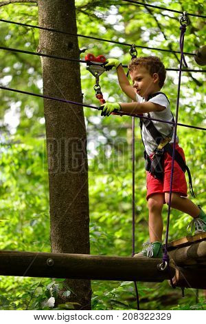 Kids climbing in adventure park. Boy enjoys climbing in the ropes course adventure. Child climbing high wire park. Happy boys playing at adventure park holding ropes and climbing wooden stairs