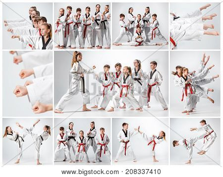 The studio shot of group of kids training karate martial arts on gray backlground. Collage