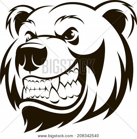 Vector illustration, a grizzly bear's head, logo, on a white background.