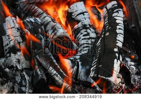 Burning wood. Texture of flames and burnt wood.