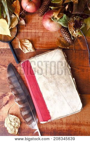 quill pen on a vintage old book on a wooden background