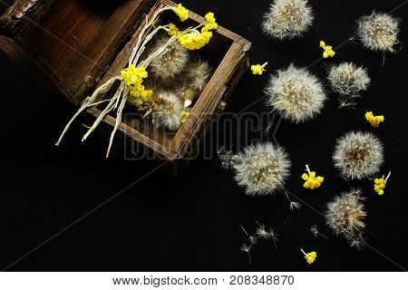 Abstraction of dandelions and small yellow flowers close-up on a black background. View from above
