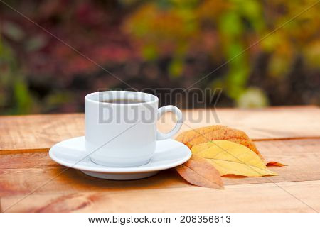 Autumn Leaves And Hot Steaming Cup Of Coffee. Wooden Table Against Golden Leaves Background. Fall Se