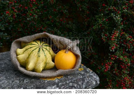 Sack With Crown Of Thorns And Orange Gourds On Bench