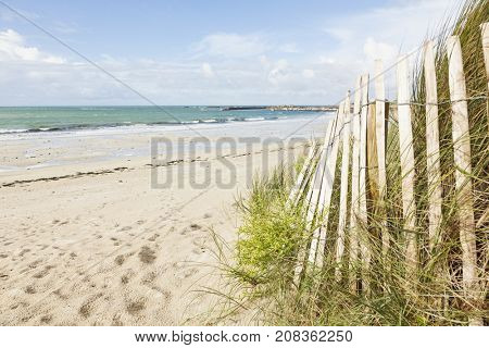 Sand fence in the dunes at the beach of Porz Meur, Brignogan-Plage, Brittany, France