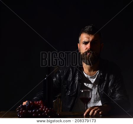 Sommelier Tastes Expensive Drink. Man With Beard Holds Wine Glass