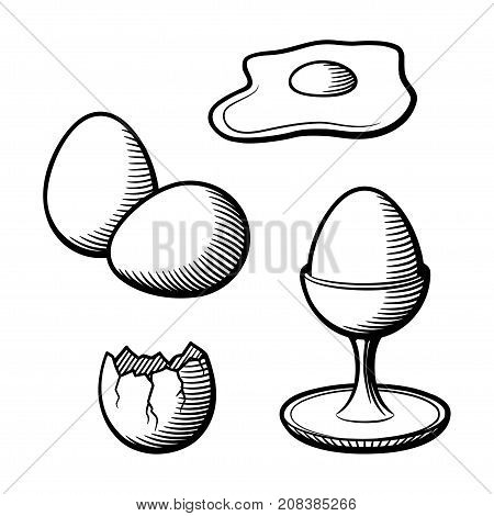 Stylized hand drawn illustration of eggs. Eggshell eggcup broken egg and yolk. Black and white vector image set