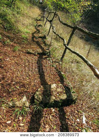Autumn landscape. Wooden railing in the forest and its shadow