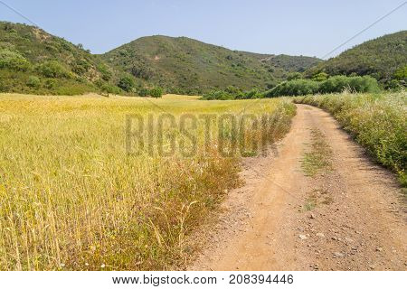 Road In Ajezur With Mountain ,vegetation And Wheat Plantation