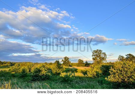 Afternoon beautiful summer landscape. Blue sky and green meadows.