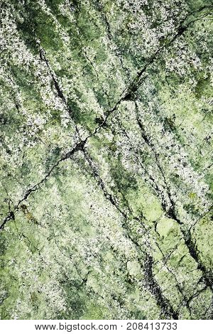 background or texture abstract greenish surface of granite