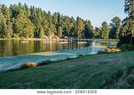 A view of rowers on Lake Washington at Seward Park.