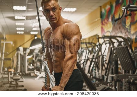 Confident Handsome Athletic Bodybuilder Workout Triceps Pushdown Rope Attachment Shirtless Power Spo