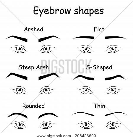 How to paint the eyebrows. Trendy makeup brows scheme. Vector illustration.