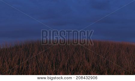 Grassy Hill At Sunset, Sky Background, Realistic 3D Render