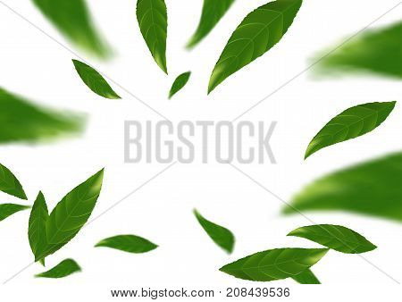 green falling tree leaves abstract modern background layout. Spring fresh leaf fly natural beauty design concept. Vector illustration