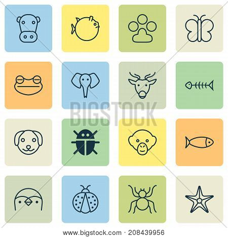 Zoo Icons Set. Collection Of Diver, Kine, Trunked Animal And Other Elements