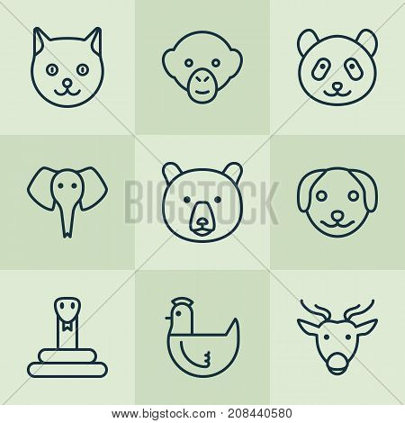 Zoo Icons Set. Collection Of Serpent, Baboon, Trunked Animal And Other Elements