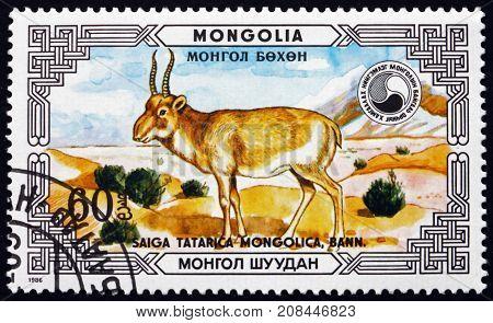 MONGOLIA - CIRCA 1986: a stamp printed in Mongolia shows Saiga Antelope Saiga Tatarica Mongolica Buck Saiga Antelope is Critically Endangered circa 1986
