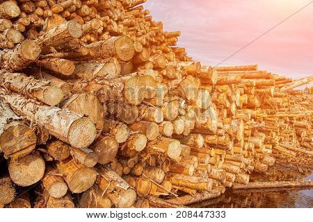Pile of wood logs, natural wooden logs stacked. Tree different formats