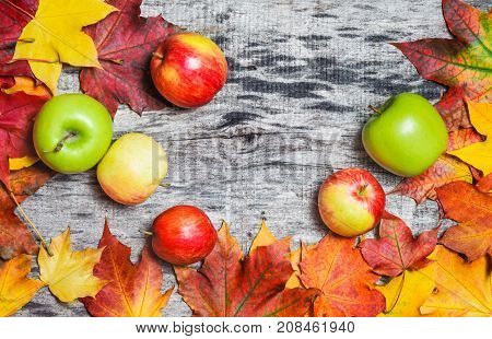 Autumn Maple Leaves And Apples  Scattered On The Wooden Board