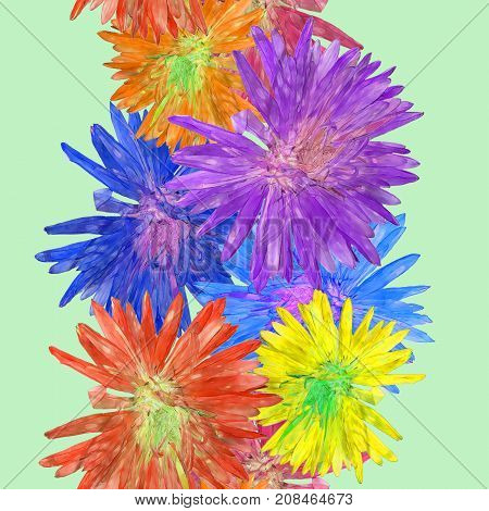 Aster Michaelmas daisy. Texture of flowers. Seamless pattern for continuous replicate. Floral background photo collage for production of textile cotton fabric. For use in wallpaper covers