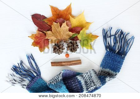 bouquet of leaves bumps and cinnamon with rowan in a warm blue scarf / bright autumn holidays