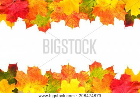 Autumn leaves double border on white background. Season composition for mock ups template with text place.
