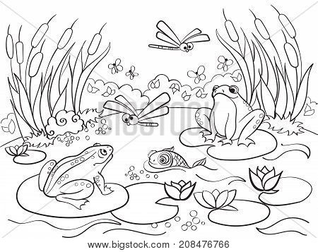 Wetland landscape with animals coloring book for adults raster illustration. Anti-stress for adult. Black and white lines insect, frog, cane, dragonfly, fish, water lily, water Lace pattern nature