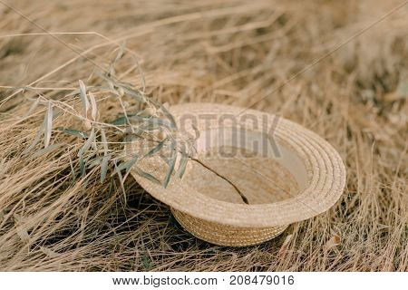 hat with olive branch on the hay