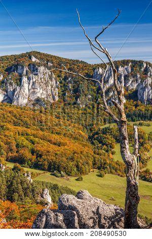 Autumn Scenery With Rocks In Sulov, Slovakia, Europe