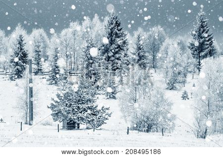 Heavy Snowfall. Landscape Of Winter Mountains