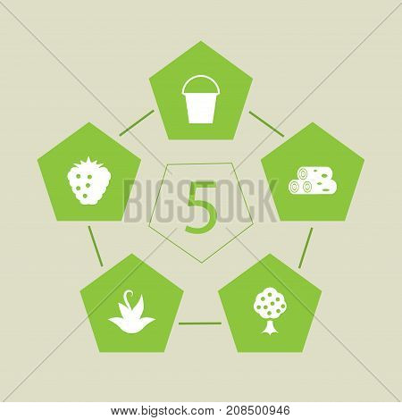 Collection Of Raspberry, Garden, Bucket And Other Elements.  Set Of 5 Household Icons Set.
