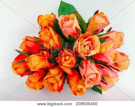 Big bouquet of over a hundred white-streaked Orange roses isolated on white background