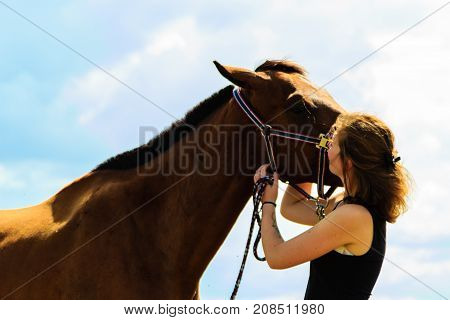 Taking care of animals love and friendship concept. Jockey young girl kissing and hugging brown horse on sunny day