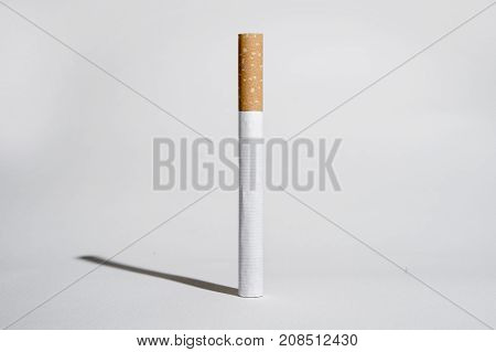 one cigarette and shadow isolated on white background in unhealthy dangerous habit of tobacco and smoking addiction concept