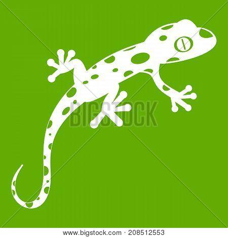 Chameleon icon white isolated on green background. Vector illustration