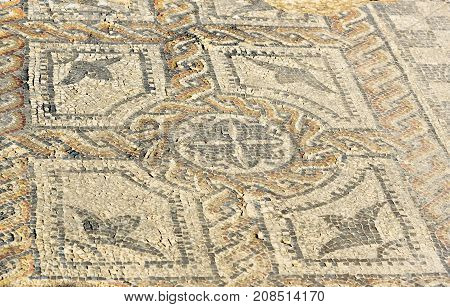 Floor Mosaic In Orpfeus House In Roman Ruins, Ancient Roman City Of Volubilis. Morocco