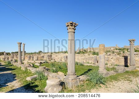Columns In Roman Ruins, Ancient Roman City Of Volubilis. Morocco