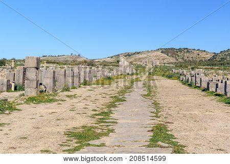 Decumanus Maximus In Roman Ruins, Ancient Roman City Of Volubilis. Morocco