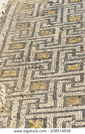 Floor Mosaic In House In Roman Ruins, Ancient Roman City Of Volubilis. Morocco