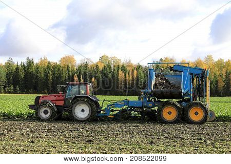 SALO FINLAND - OCTOBER 6 2017: Farmer harvests sugar beet with red Valtra Valmet tractor and Edenhall 733 beet harvester on a sunny day of October in South of Finland.