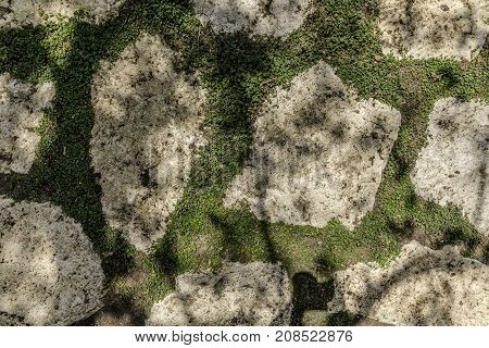 Footpath made of natural white uneven stones buried in soil with green vegetation background