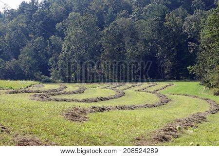 Freshly cut hay rows curve around this green field.