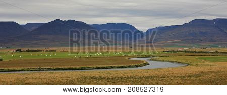 Rural landscape in Nordurland. Iceland. Scene near Varmahlid.