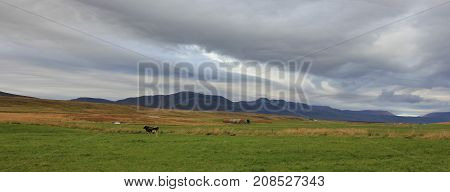 Moody sky over a green meadow and mountains.