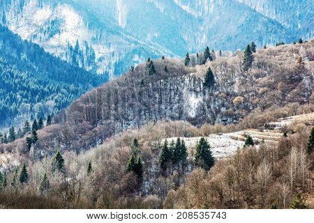 Deciduous and coniferous forest in winter mountains Slovak republic. Seasonal natural scene.