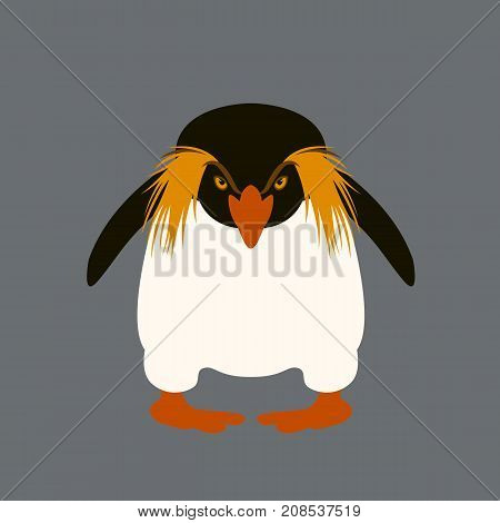 penguin angry vector illustration style flat front side
