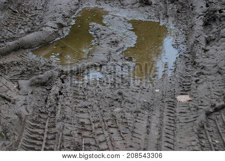 Traces of the car in a dirty puddle