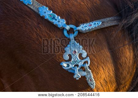 Details of the harness of Mongolian horses.